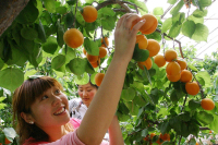 唐山:迁安乡村旅游成为农村经济增长新引擎